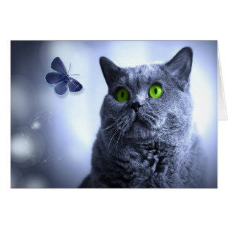 Sweet Russian Blue Cat with a Butterfly Note Card