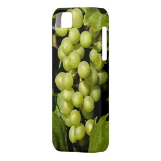 Sweet temptation case for the iPhone 5