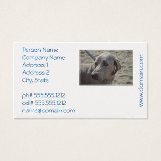 Sweet Weimaraner Business Card