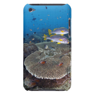 Sweetlip Fish Barely There iPod Case