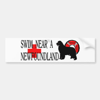 Swim near a Newfoundland Bumper Sticker