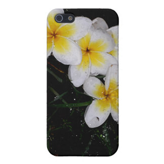 Swimming in the Rain Mulit Products Cases For iPhone 5