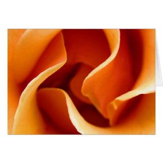 swirly rose greeting card