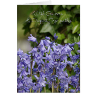 Sympathy Card - Bluebells And Ivy