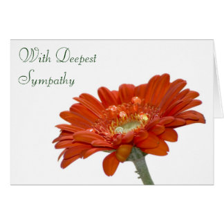 Sympathy Card - Orange Daisy Gerbera Flower