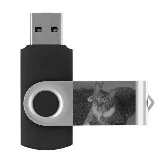 Tabby 16 GB Flash Drive