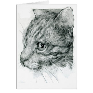 Tabby cat pencil drawing greeting card