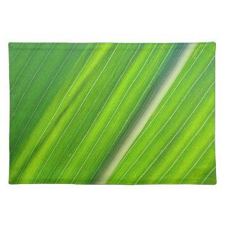 Table set corn sheet Design Placemat