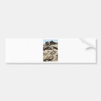 Tafoni Dwellings Vertical Bumper Sticker