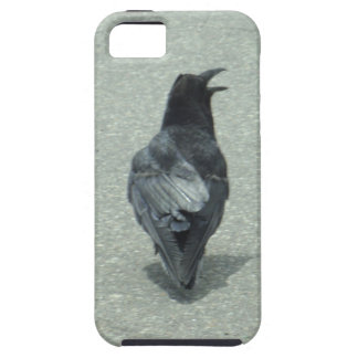Talking Raven Cell Phone Case iPhone 5 Cases