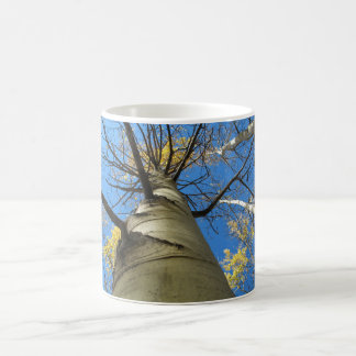 Tall Quaking Aspen Tree Coffee Mug