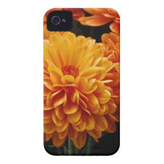 Tangerine Mums iPhone 4 Case-Mate Case