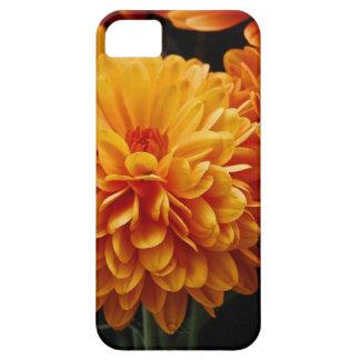 Tangerine Mums iPhone 5 Cover