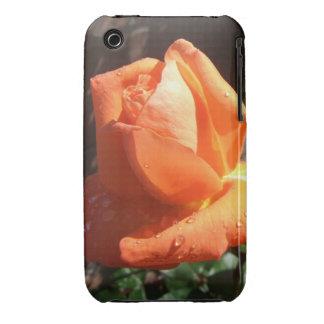 Tangerine Rose iPhone 3 Covers