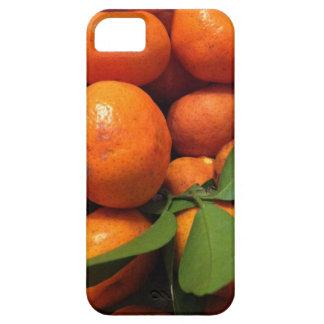 Tangerines case