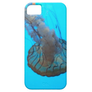 Tanked Jelly Barely There iPhone 5 Case