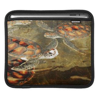 Tanzania, Zanzibar, Nungwi, Mnarani Aquarium 2 iPad Sleeve