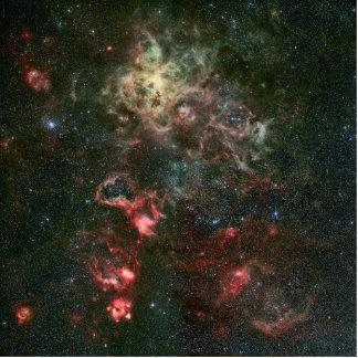 Tarantula Nebula and its surroundings Photo Sculptures