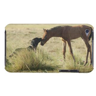 Tarifa, Cadiz, Andalusia, Spain 2 iPod Touch Case-Mate Case