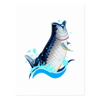 TARPON FISH POSTCARD