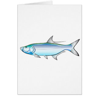 Tarpon Ocean Gamefish illustration vector Card