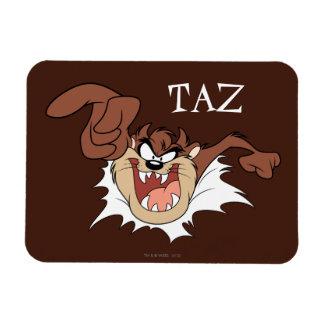 TAZ™ Bursting Through Page Magnet