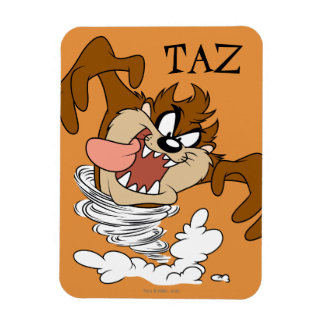 TAZ™ Whirling Tornado Magnet