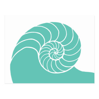 Teal Nautilus Sea Shell Postcard