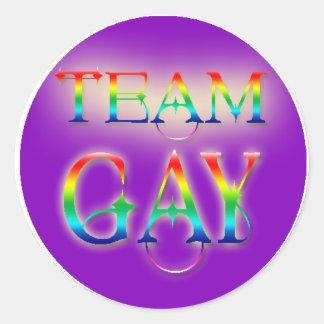 Team Gay Round Sticker