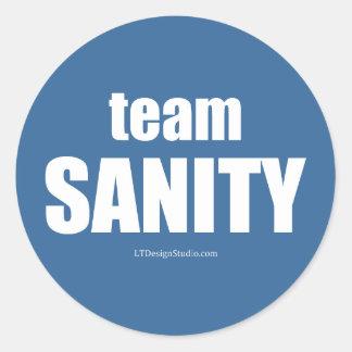 Team Sanity - Stickers