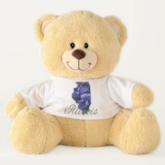 Teddy Bear - ILLINOIS