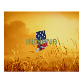 TEE Indiana Patriot Poster