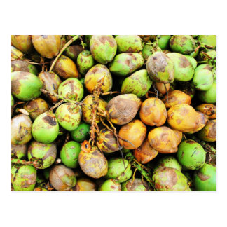 tender coconuts post cards