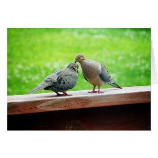 Tender Lovebirds Kiss Greeting Card