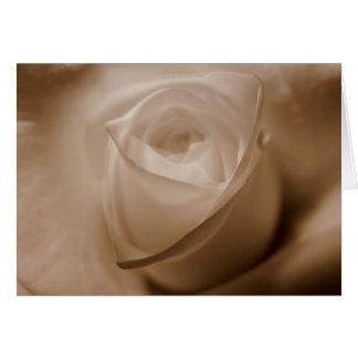 Tenderness Greeting Card
