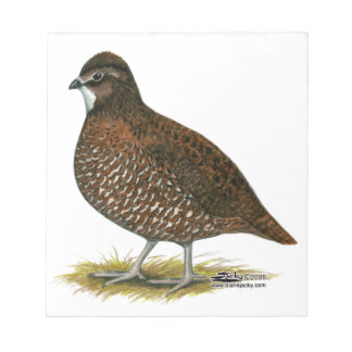Tennessee Red Quail Notepad
