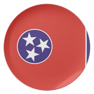 tennessee usa state flag plate america