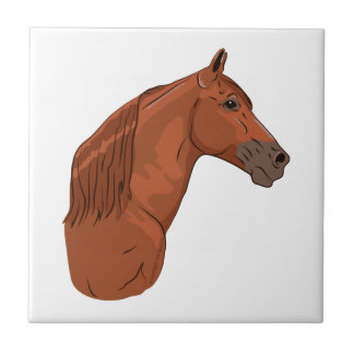 Tennessee Walking Horse 1 Small Square Tile