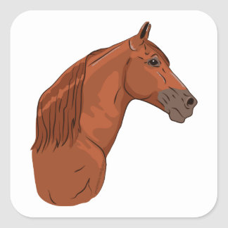 Tennessee Walking Horse 1 Square Sticker