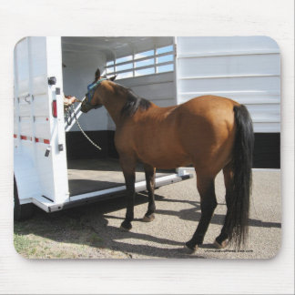 Tennessee Walking Horse & Horse Trailer Mouse Pad