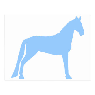 Tennessee Walking Horse light blue Postcards