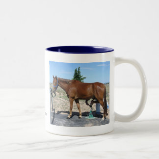 Tennessee Walking Horse Pedicure - Equine Humor Mugs