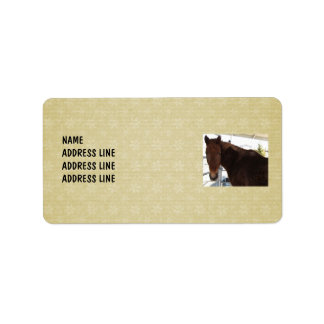 Tennessee Walking Horse Snow Background - Western Address Label