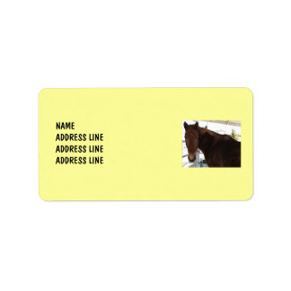 Tennessee Walking Horse Your Background - Western Address Label