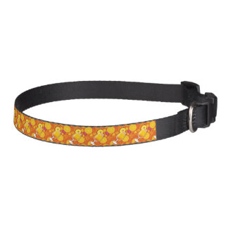 Tequila sunrise pet collar