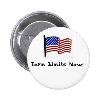 Term Limits Now! Pinback Button