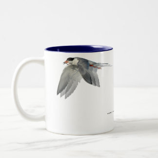 Tern in Flight 1 Mug