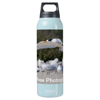 Tern Insulated Water Bottle