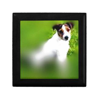 terrier gift box