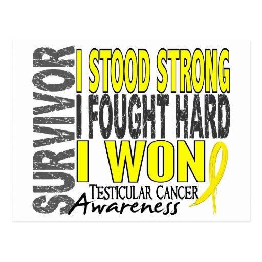 Testicular Cancer Survivorship